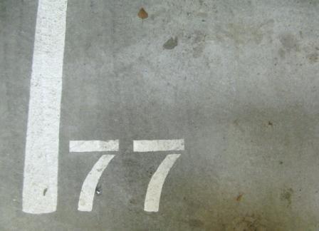 1216689.jpg