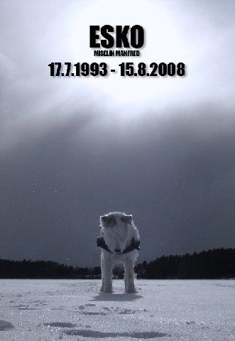 1829906.jpg